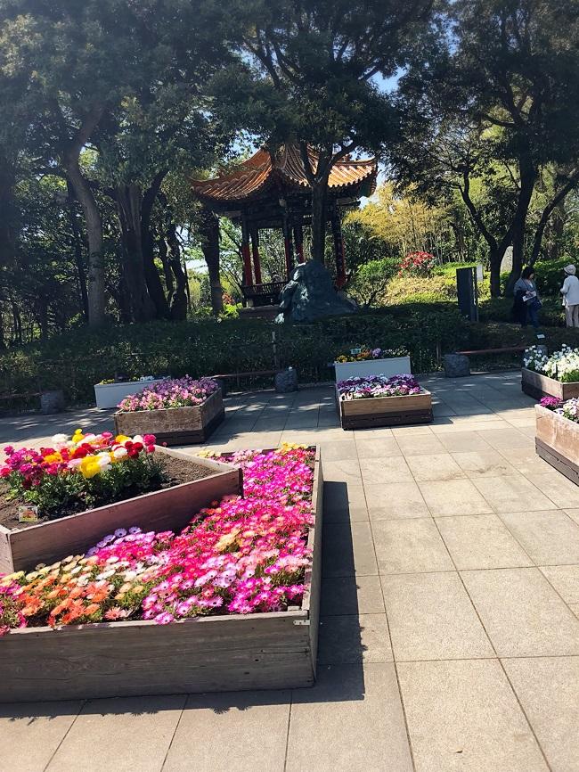江之島植物園
