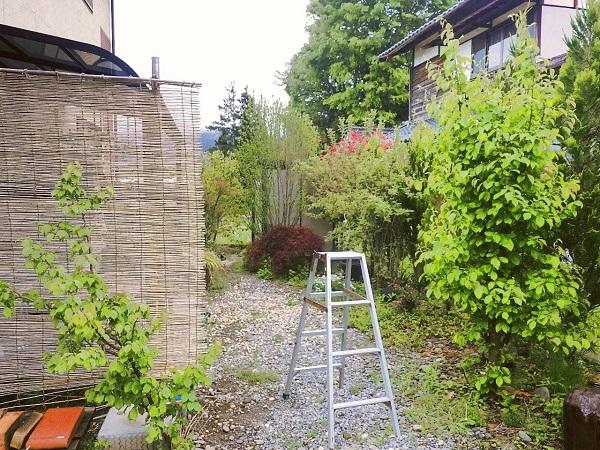 【施工前】花壇との間が曖昧で草取りが大変な庭