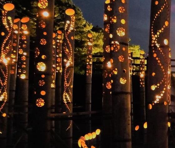 光と竹のコラボ!辰野ほたる祭りがレベルアップしていた!!