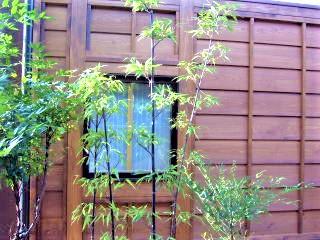 狭い庭を作るコツ!和室の窓