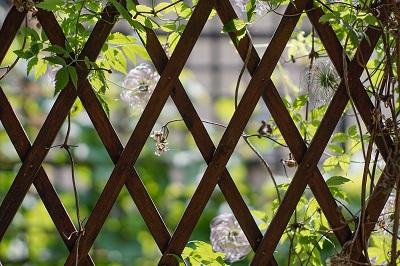 狭い庭を作るコツ!ウッドパネル トレリス