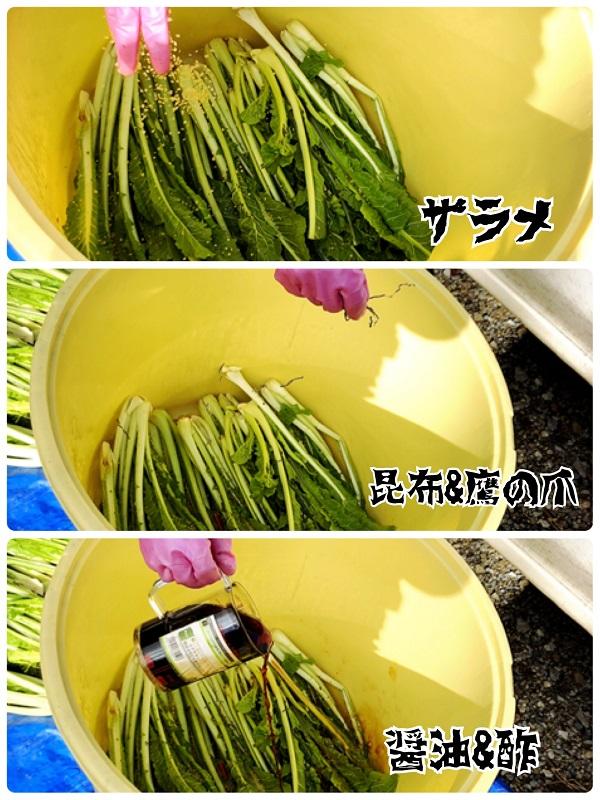 今年の野沢菜醤油漬け!分量~手順【2018年度版】
