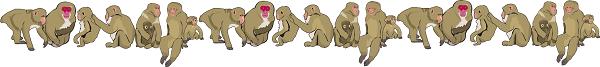 こまくさの湯猿が見れる