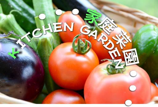 ガーデニングと両方楽しめる家庭菜園に庭をリフォーム