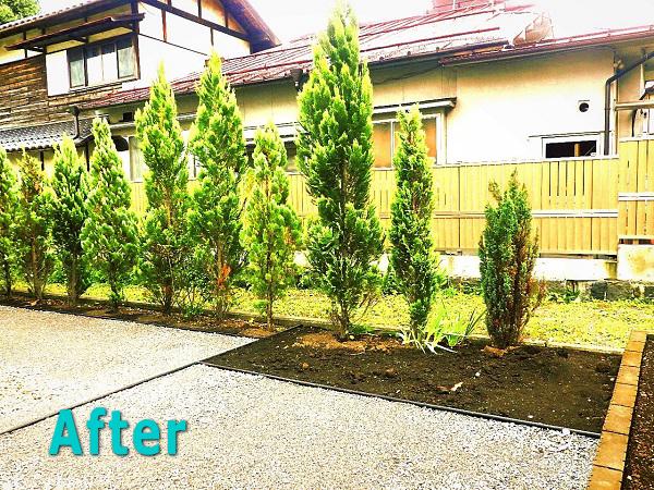 【施工後】防草シートでメンテナンス不要!きちっと仕切ってメリハリのある庭