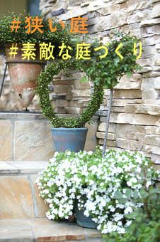 狭い庭でもできる素敵な植物ガーデニングの作り方