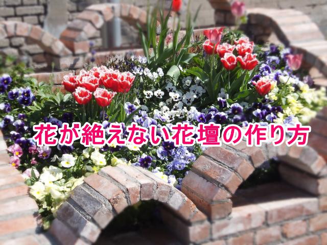 一年中、花が絶えない花壇の作り方と初心者でも簡単で育てやすい花選び