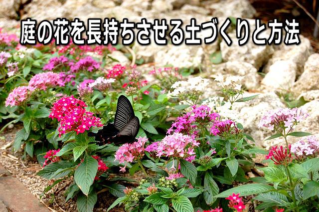 庭の花を長持ちさせる土づくりと方法 手入れのコツは?