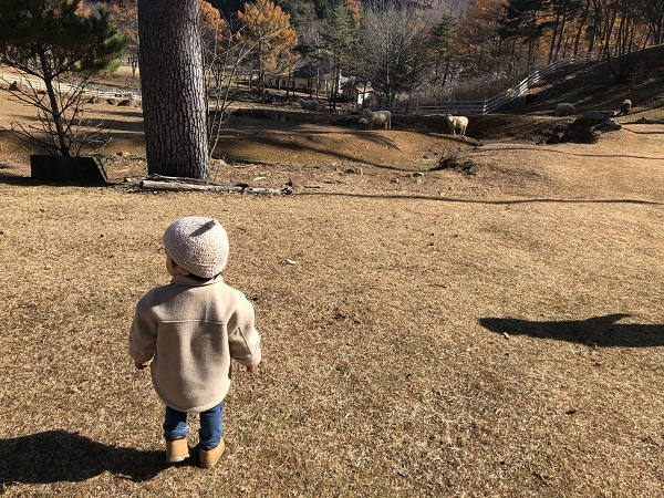 21年間ありがとう!信州塩尻農業公園『チロルの森』閉園