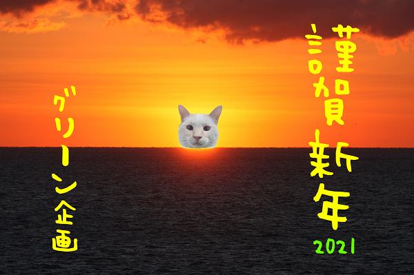 謹賀新年2021バージョン猫初日の出